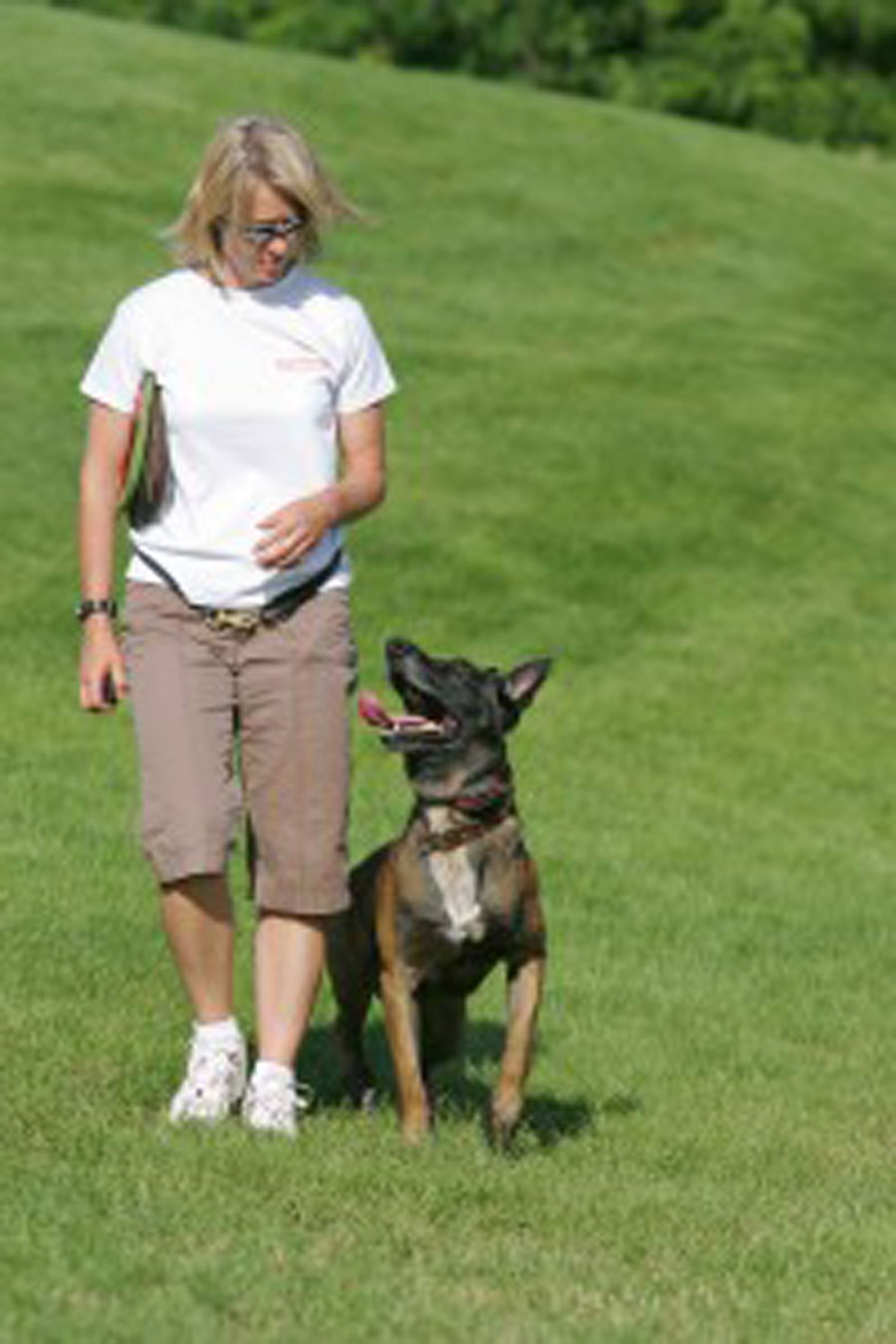 A Professional Dog Trainer's message to the University of Wisconsin
