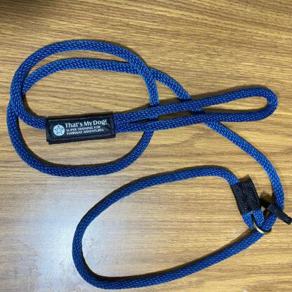 transitional leash